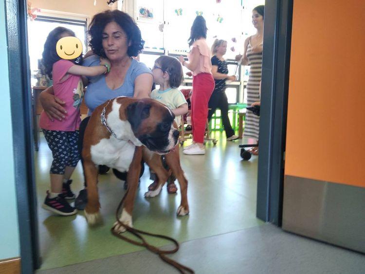 Σκύλος θεραπείας στην ΕΛΕΠΑΠ Αγρινίου (ΔΕΙΤΕ ΦΩΤΟ)