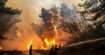 Δυτική Ελλάδα: Φωτιά καίει δάσος στην Δυτική Αχαΐα