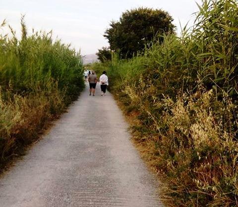 Επιστολή διαμαρτυρίας κατοίκων της Λυγιάς προς το δήμο Λευκάδας: «Καθαρίστε τα ξερά χόρτα» (ΦΩΤΟ)