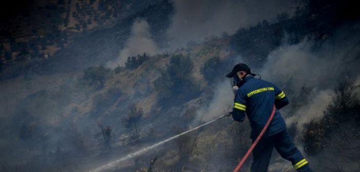 Φωτιά στην Γαυρολίμνη (ΔΕΙΤΕ ΦΩΤΟ)
