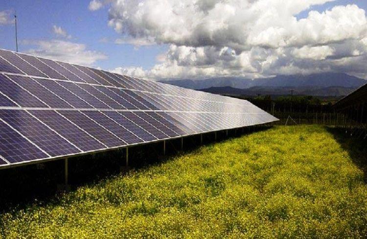 Αγροτικά φωτοβολταϊκά: Στο 75% η πώληση ρεύματος στη ΔΕΗ από τους αυτοπαραγωγούς