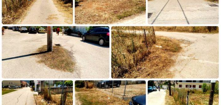 Μύτικας: Με πρωτοβουλία του Συλλόγου Επαγγελματιών Μύτικα κόβονται τα χόρτα στους κοινόχρηστους χώρους (ΦΩΤΟ)