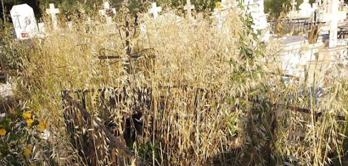 Τα χόρτα έπνιξαν το παλιό κοιμητήριο στο Μοναστηράκι Βόνιτσας (ΔΕΙΤΕ ΦΩΤΟ)