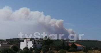 Φουντώνει η φωτιά στην Εύβοια – Απομακρύνθηκαν οι κάτοικοι από το Μακρυχώρι! (ΔΕΙΤΕ ΦΩΤΟ)