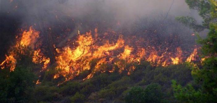 Αιτωλοακαρνανία: Ακόμη μια ημέρα επικίνδυνη για πυρκαγιές!