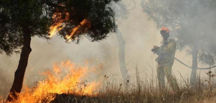 """Αιτωλοακαρνανία: Σε """"κίτρινο συναγερμό"""" για φωτιές! (ΔΕΙΤΕ ΧΑΡΤΗ)"""