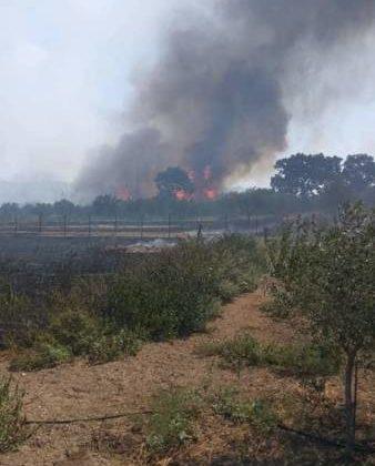 Οι φλόγες έζωσαν την Δυτική Ελλάδα! (ΔΕΙΤΕ VIDEO)