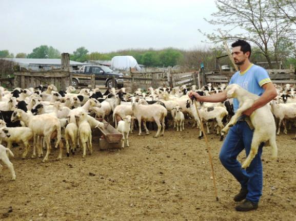 Δεν ήταν στις προτεραιότητές τους οι κτηνοτρόφοι της Αιτωλοακαρνανίας