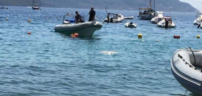 Νεκρό δελφίνι στο Δεσίμι Λευκάδας (ΔΕΙΤΕ ΦΩΤΟ)