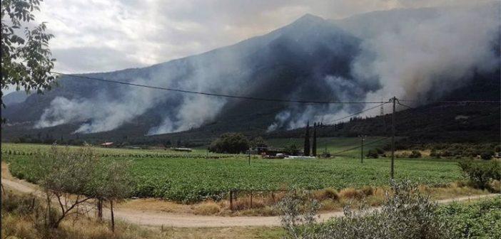Πυρκαγιά στην Τιθορέα Φθιώτιδας