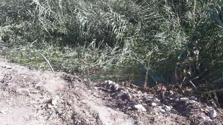 Tην Τρίτη στο Αγρίνιο η κηδεία του 28χρονου Γιώργου Βλαχοδήμου που σκοτώθηκε σε τροχαίο στα Αμπάρια Παναιτωλίου (ΦΩΤΟ)