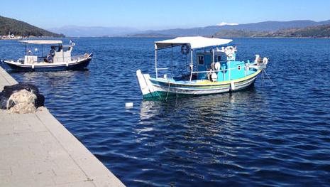 Εκλογές στο Σύλλογο Αλιέων Αμφιλοχίας