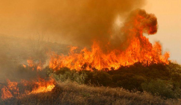 Φωτιά στο Κάτω Ευηνοχώρι κατακαίει καλαμώδη έκταση