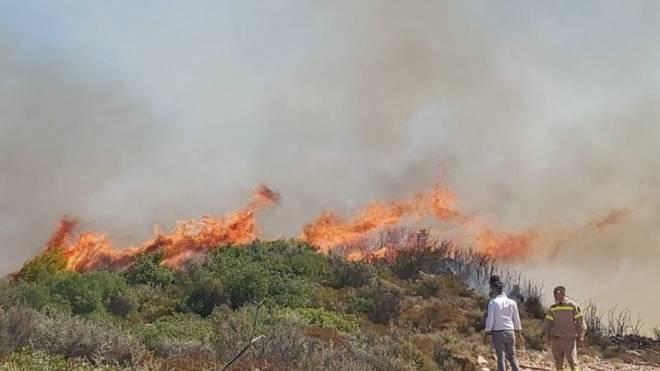 Μεσολόγγι: Έβαλε να κάψει κλαδιά και έγιναν στάχτη 15 στρέμματα αγροτοδασικής έκτασης