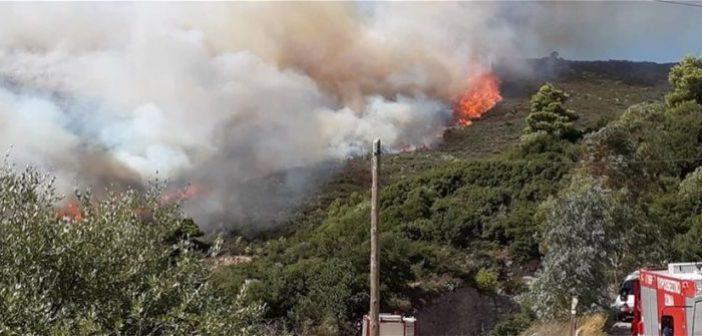 Φωτιά στη Ζάκυνθο: Νύχτα κόλαση! Δυο σπίτια παραδόθηκαν στις φλόγες (ΔΕΙΤΕ ΦΩΤΟ + VIDEO)