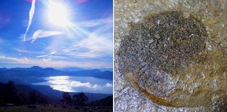 Παλαιοντολογικά ευρήματα στην περιοχή της λίμνης Τριχωνίδας (ΦΩΤΟ)