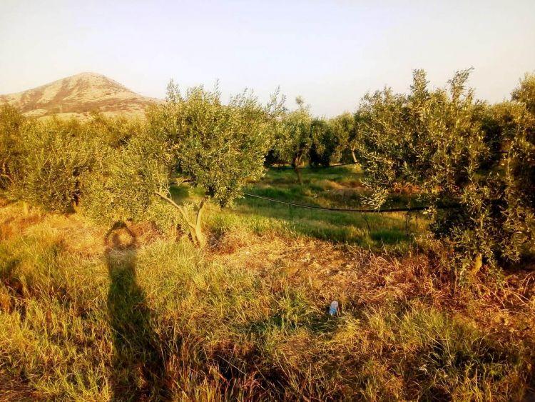 Μεσολόγγι: Ευχαριστήριο της οικογένειας του αδικοχαμένου ανεμοπτεριστή Ν. Κούστα – Δείτε φωτογραφίες από τον τόπο της τραγωδίας