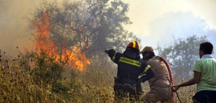 Μακρυνεία: Μεγάλη κινητοποίηση της Πυροσβεστικής για δασική πυρκαγιά