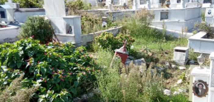 """""""Πνιγμένο"""" στα χόρτα το νεκροταφείο στον Προδρόμου Ξηρομέρου (ΦΩΤΟ)"""