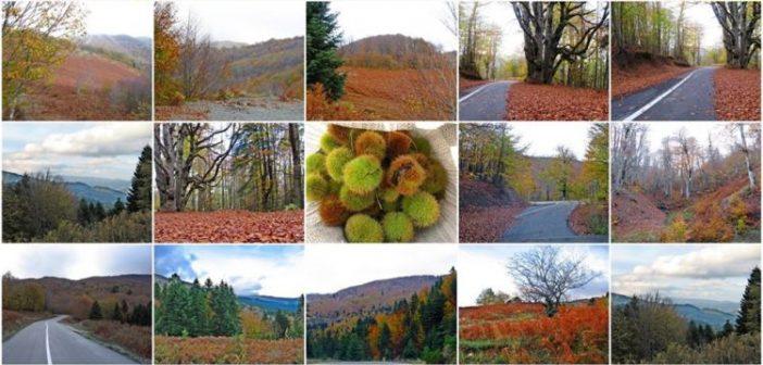 Μαγική Φθινοπωρινή ορεινή Ναυπακτία (ΔΕΙΤΕ ΦΩΤΟ)