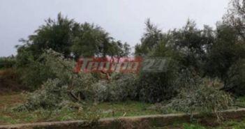 Σφοδρή κακοκαιρία στην Αχαΐα – Από θαύμα σώθηκε αγρότης στα Σπάτα
