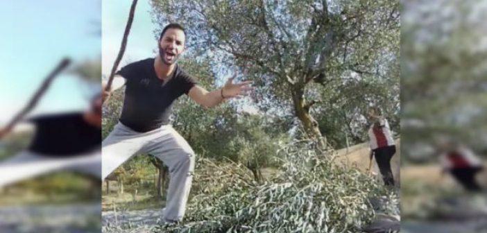 Ο Πατρινός Γιάννης Πεφάνης «αμάρτησε» στις ελιές κι έγινε θέμα στον Μουτσινά (VIDEO)