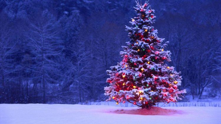 Οι εκτιμήσεις για τις καιρικές συνθήκες Χριστούγεννα και Πρωτοχρονιά