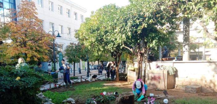 Οι μαθητές που «υιοθέτησαν» την πλατεία Παναγοπούλου φύτεψαν κυκλάμινα