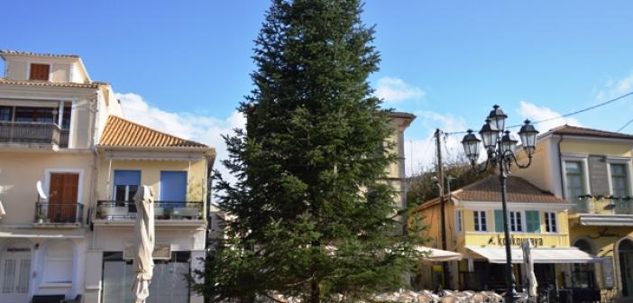 Δωρεά το πιο ψηλό χριστουγεννιάτικο δέντρο στην Λευκάδα – 30.000 λαμπιόνια (ΔΕΙΤΕ ΦΩΤΟ)