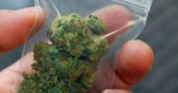 Αγρίνιο: Δύο συλλήψεις για ναρκωτικά στην Ιόνια Οδό – Ο ένας έκρυβε το χασίς μέσα σε σχολική τσάντα!