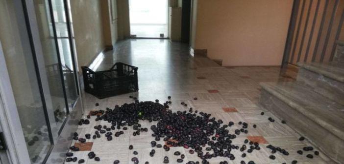 Πέταξαν ελιές στα γραφεία του ΕΛΓΑ – Διαμαρτύρονται οι αγρότες στο Αγρίνιο  (ΦΩΤΟ)