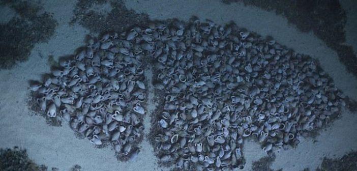 Σημαντική ανακάλυψη στην Κεφαλονιά: Εντοπίστηκε ρωμαϊκό ναυάγιο της εποχής του Χριστού (ΔΕΙΤΕ ΦΩΤΟ)