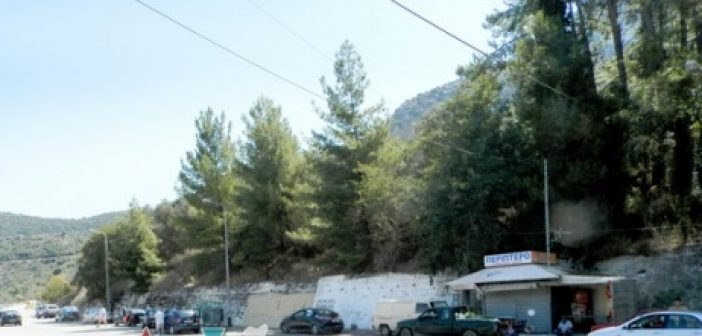 Αθωώθηκαν ο πρώην δήμαρχος και αντιδήμαρχοι Ναυπακτίας για τα κομμένα δέντρα