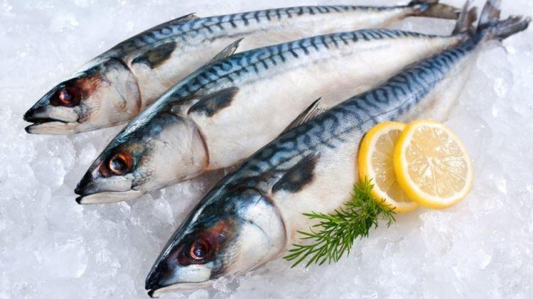Πρέβεζα: Απατεώνες πούλησαν… «αόρατα» ψάρια σε ιχθυοπωλείο!