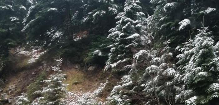 Ορεινή Ναυπακτία: Έπεσαν τα πρώτα χιόνια (ΔΕΙΤΕ ΦΩΤΟ)