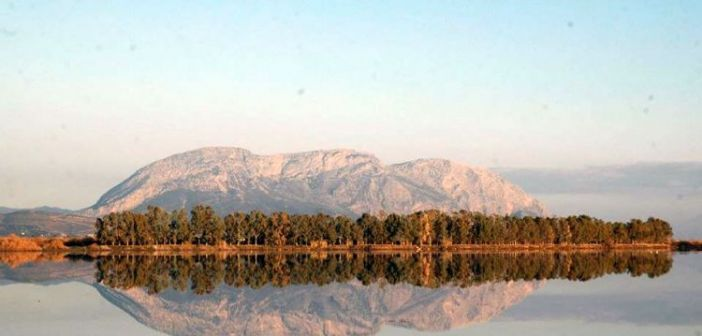 Στη λιμνοθάλασσα του Μεσολογγίου η φύση ξεπερνά και τον ίδιο της τον εαυτό! (ΔΕΙΤΕ ΦΩΤΟ)