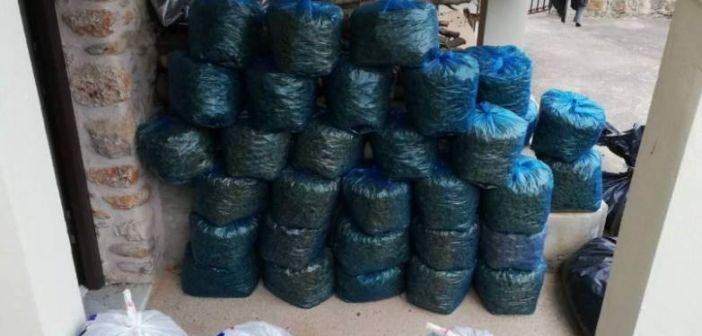Δυτική Ελλάδα: Εξαρθρώθηκε κύκλωμα ναρκωτικών – Διακινούσαν μεγάλες ποσότητες κάνναβης – Πάνω από 1 εκ. ευρώ η αξία των κατασχεθέντων (ΦΩΤΟ + VIDEO)