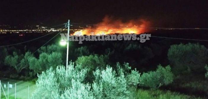 Πυρκαγιά στα όρια Αντιρρίου και Μακύνειας (ΦΩΤΟ + VIDEO)