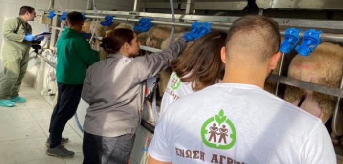 Feed For Milk: Ξεκίνησε το ερευνητικό πρόγραμμα στο Αγρίνιο