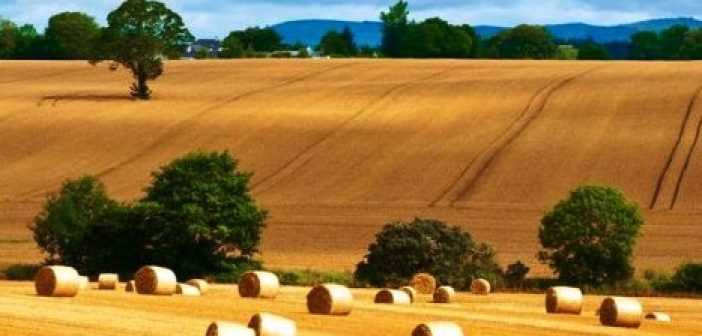 Χαρδαλιά δηλώσεις ΟΣΔΕ: Σύμβουλοι Αγροτικών Εκμεταλλεύσεων