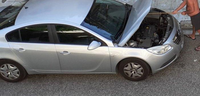 Απεγκλωβισμός φιδιού από μηχανή αυτοκινήτου στο Μεσολόγγι (ΔΕΙΤΕ ΦΩΤΟ)