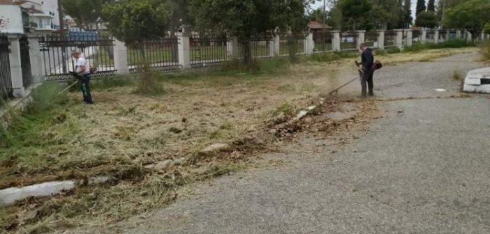 Μεσολόγγι: Με μεράκι και μπόλικο εθελοντισμό καθαρίστηκε το παλιό νοσοκομείο (ΦΩΤΟ)
