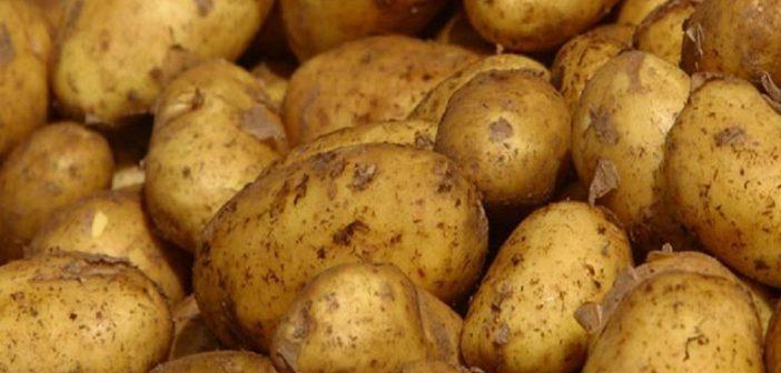 """""""Βάλτε επιτέλους STOP στις παράνομες ελληνοποιήσεις πατάτας"""""""