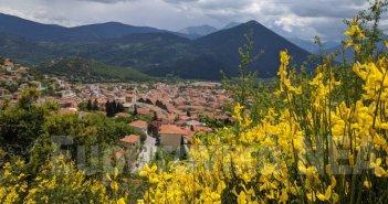 Σπάρτο, το κίτρινο ευωδιαστό φυτό που στολίζει τέτοια εποχή την Ευρυτανία