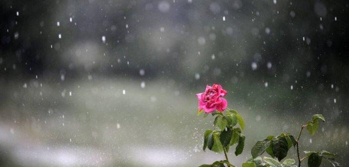 Καιρός αύριο : Άρωμα φθινοπώρου την Πέμπτη 25 Ιουνίου – 'Ερχονται βροχές και καταιγίδες