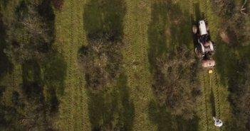Αιτωλοακαρνανία: Πρόσληψη 5 Γεωπόνων Τομεαρχών για τη Δακοκτονία