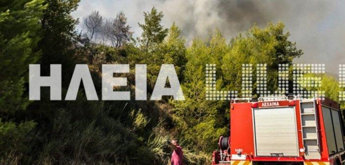 Πυροσβέστες από την Αιτωλοακαρνανία σε μάχη με τις φλόγες στην Ηλεία