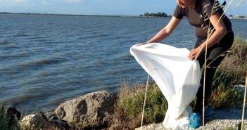 Λευκάδα: Η διάσωση ενός γλάρου (ΦΩΤΟ)