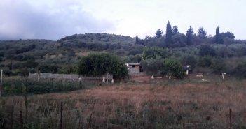 Κλεφτοκοτάδες άδειασαν αγρόκτημα στο Λουτρό Αμφιλοχίας (ΦΩΤΟ)