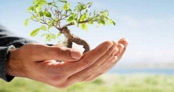 """Το """"πράσινο μήνυμα"""" για την Παγκόσμια Ημέρα Περιβάλλοντος των Γεωπόνων της Π.Ε.Π.Τ.Ε.Γ."""